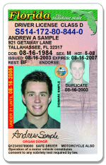 Learners Licence